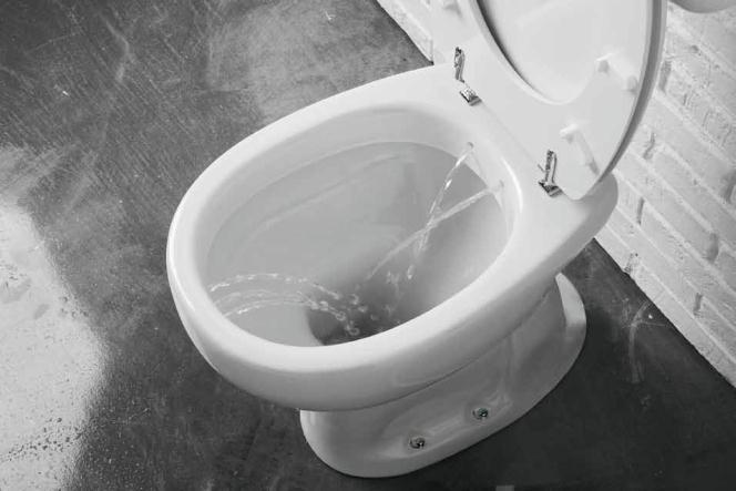 Sanitari per anziani e disabili wc bidet integrati for Water e bidet insieme