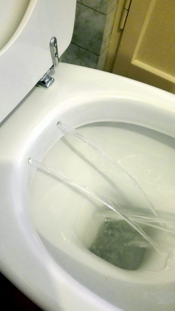 WC BIDET PER ANZIANI E DISABILI SERIE MILANO